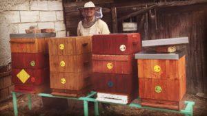 včelař u úlů
